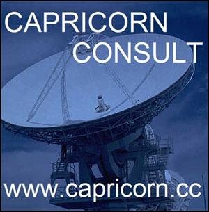 Capricorn Consult
