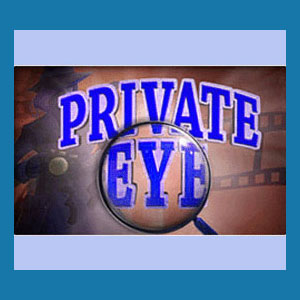 Private Investigator Books