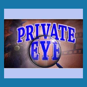 Private Investigator Books